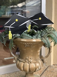 Grad Cap Plant and Yard Stakes