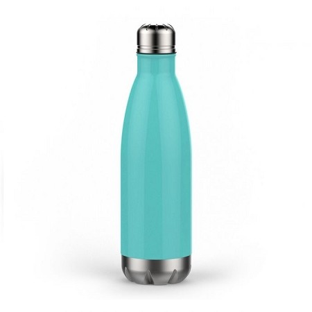 Anchor Stainless Steel Bottle - Mint