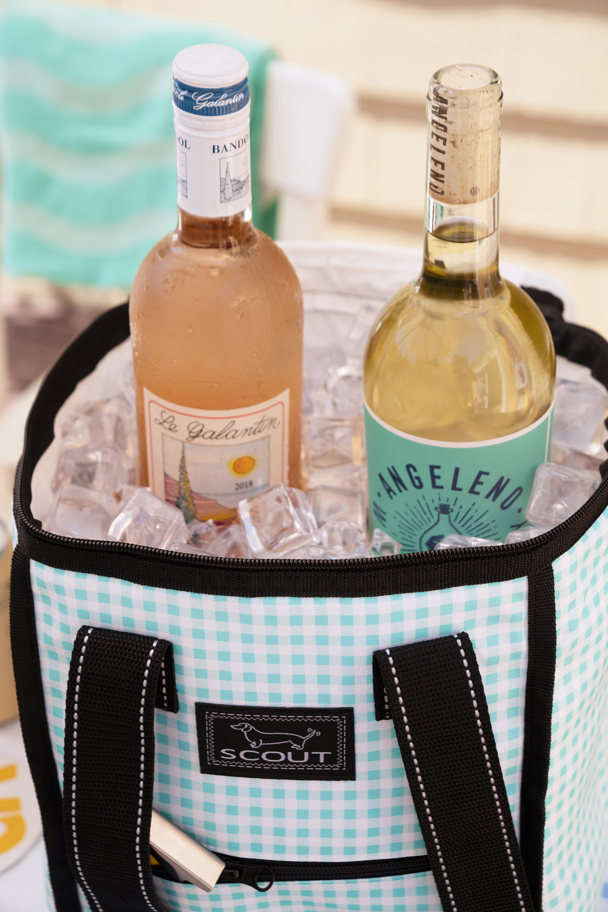 Food/Wine Carriers